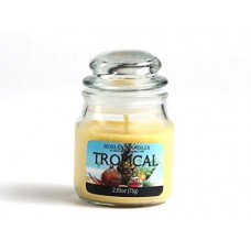 Deals, Discounts & Offers on  - Hosley Tropical Mist Highly Fragranced, 2.65 Oz Wax, Jar Candle