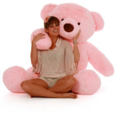 Deals, Discounts & Offers on Toys & Games - LOVE2SHOP 3 Feet Premium Quality Best Teddy Bear, Best Gift