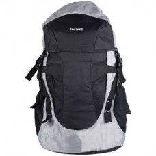 Deals, Discounts & Offers on Accessories - Flat 71% off on Panther Black and Grey Backpack