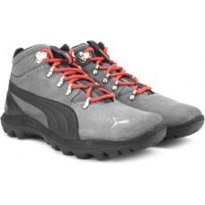 Deals, Discounts & Offers on Foot Wear - Puma Men Outdoor Shoe