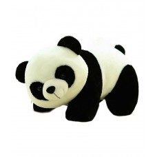 Deals, Discounts & Offers on Baby & Kids - Kashish Toys White And Black Teddy Bear