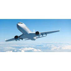 Deals, Discounts & Offers on International Flight Offers -  Flat Rs.555 Cashback on all flight bookings.