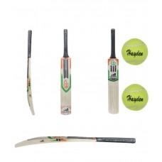 Deals, Discounts & Offers on Auto & Sports - Master Blaster Cricket bat With 2 Hayden Tennis Balls
