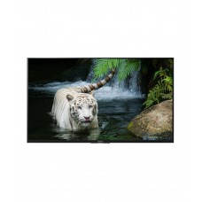Deals, Discounts & Offers on Televisions - Sony BRAVIA KDL-43W800D
