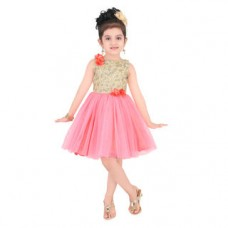 Deals, Discounts & Offers on Kid's Clothing - Littleopia Girls Partywear Frock