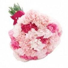 Deals, Discounts & Offers on Home Improvement - In Love Carnations
