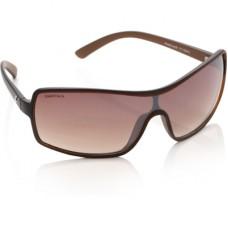 Deals, Discounts & Offers on Men - Flat 25% Cashback on Sunglasses