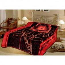 Deals, Discounts & Offers on Home Appliances - Sparkk Premium Double Bed Mink Blanket @ RS.599